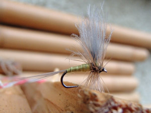 CDC Winged Olive dun