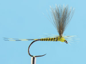 Parachute Quill CDC  Olive